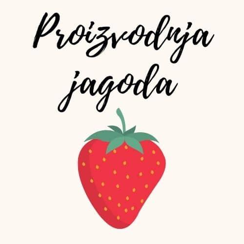 Proizvodnja jagoda